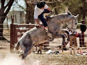 Argentina Estancia Rodeo