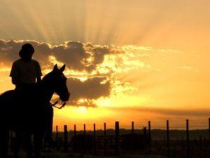 Argentina Gaucho Sunset