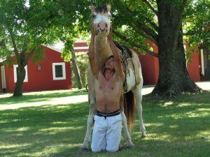 Argentina Horse Whispering La-Bamba-gaucho